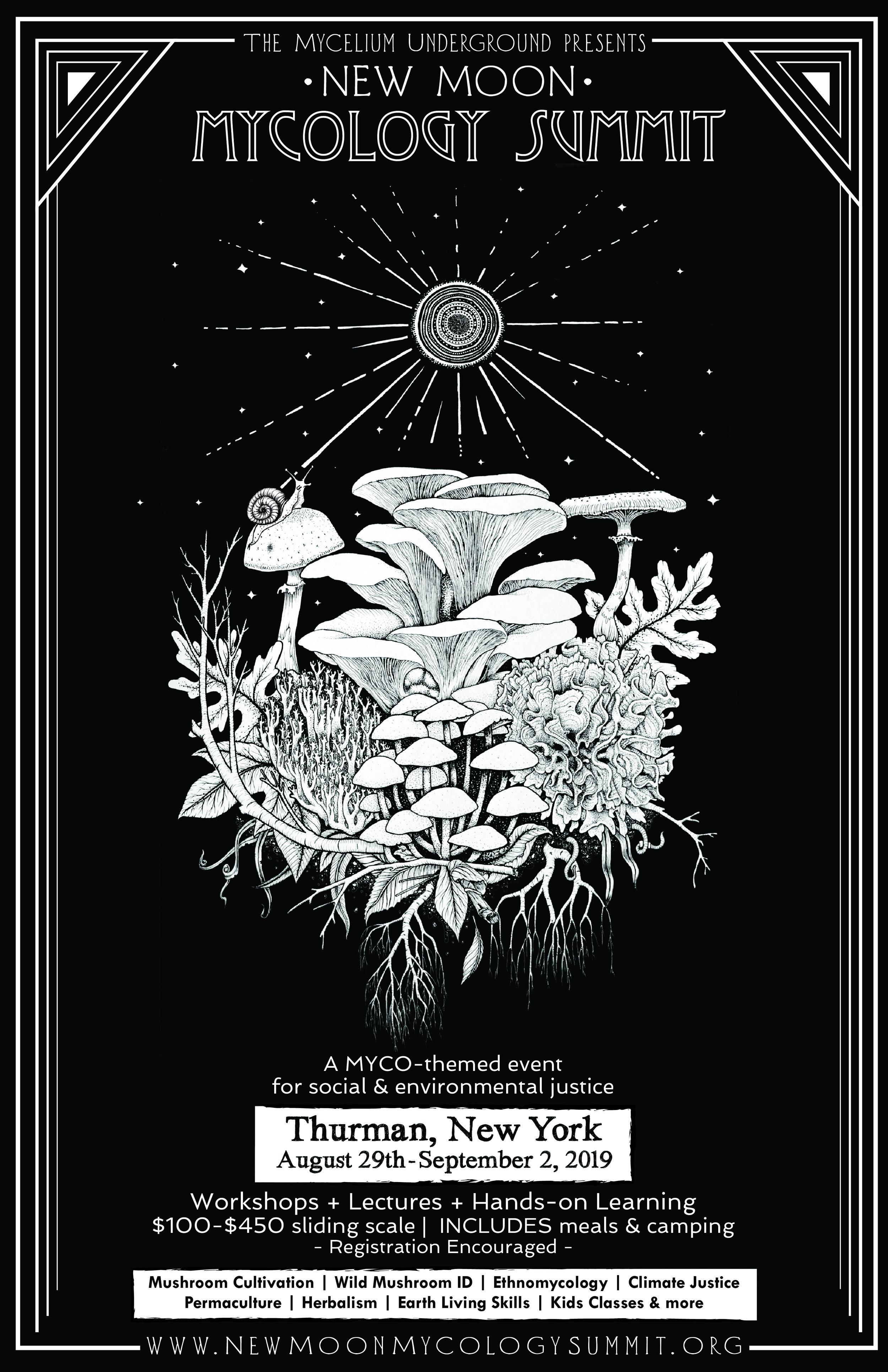 NMMS Poster 3-01.jpg