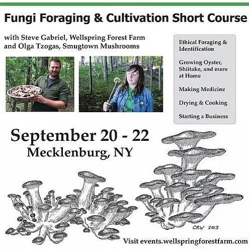 Good morning world!  It's been such a busy month so far and this week I get to check back in and reflect in the next month ahead....and it's an amazing preview and I'm psyched!  I'm excited and honored to join my buddy Steve Gabriel from @wellspringforestfarmschool, for our Fourth Annual Fungi Foraging and Cultivation Short Course!  Steve is an amazing author of two acclaimed books, is a land steward and overall a great person. I always feel heard and seen when I work with Steve, and that is important to me!  Steve and I bring both the cultivation aspect of Mycology and of course we honor and observe the wild Fungi world as well!  This class is a great beginner course for folks looking to grow mushrooms indoors, outdoors and get more confident with their wild mushroom identification!  We always have the best time! hence our fourth year doing it!  Head to @wellspringforestfarmschool and read up and register!  Did I mention the workshop is being held in the traditional lands of the Haudenosaunee, now called Finger Region? Because it is! So close to both Ithaca and Watkins Glen!  Yay!  www.events.wellspringforestfarm.com  #smugtownmushrooms #mycology #stevegabriel #wellspringforestfarmandschool #wellspringforestfarm #mushroomcultivation #fungi #fingerlakes #newyork #haudenosauneeland #pleurotus #lentinulaedodes #loggrownshiitake #wildfood #wildmushrooms #mycelium #trumansburgny #ithaca