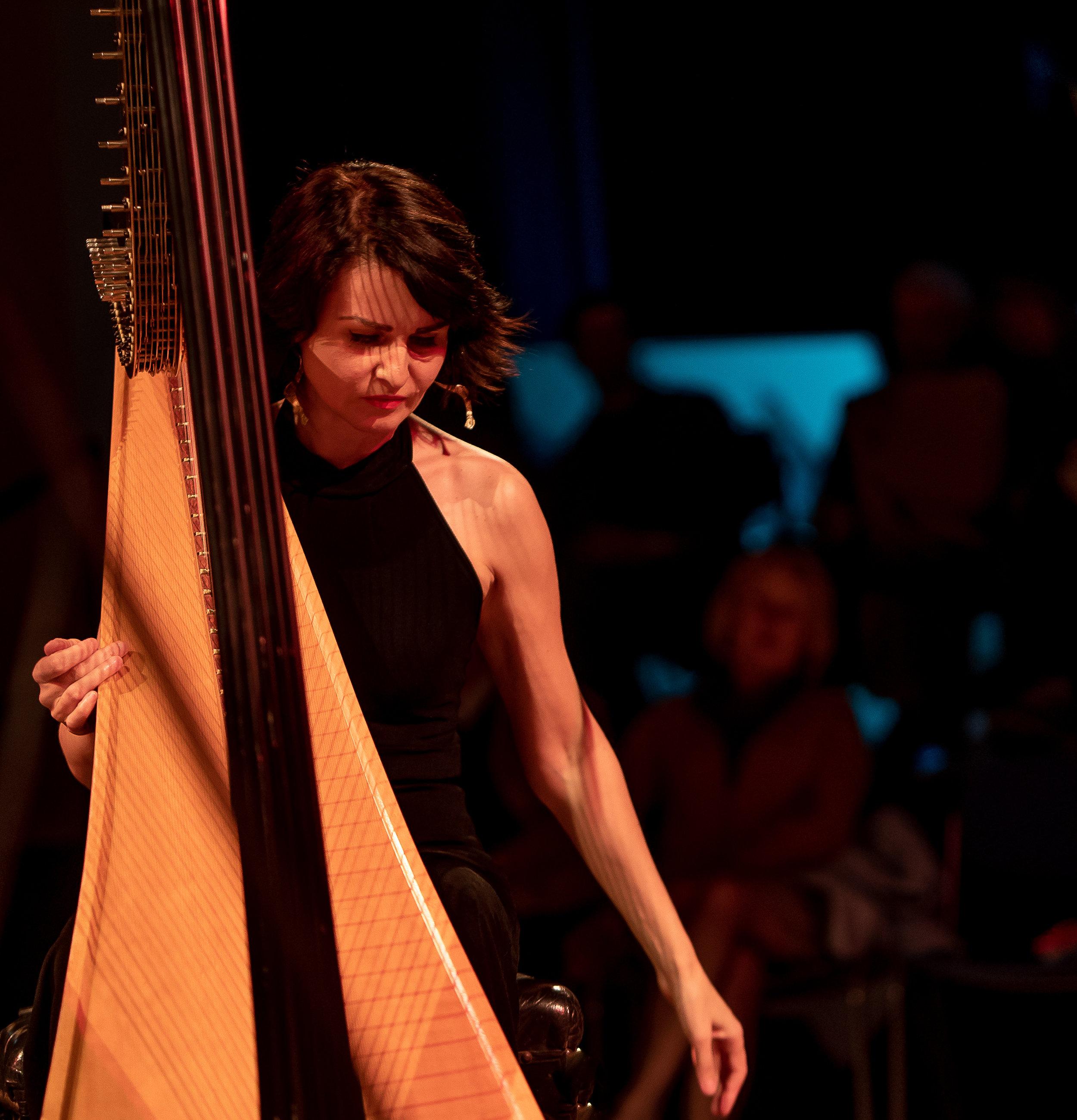 Alina Bzhezhinska Harpist by Steven Cropper.jpg