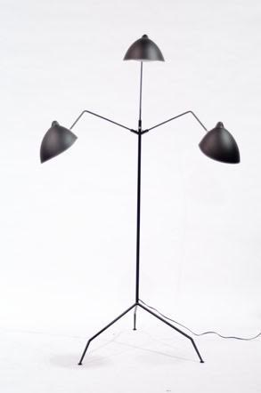 Contemporary mantis floor lamp (can be ordered).jpg