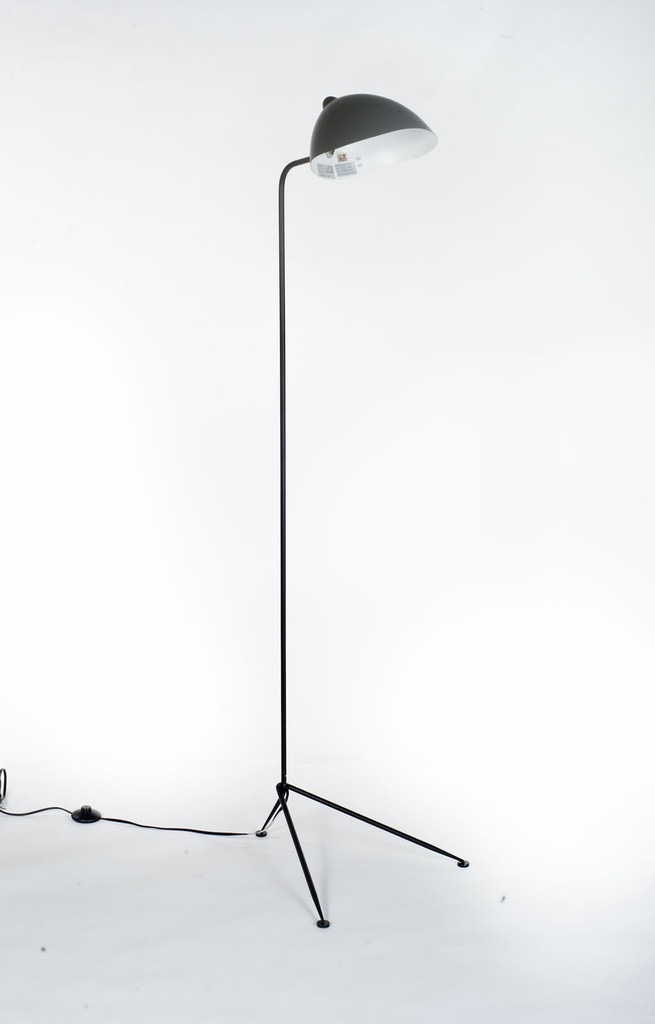 Contemporary Flytrap Floorlamp (can be ordered).jpg