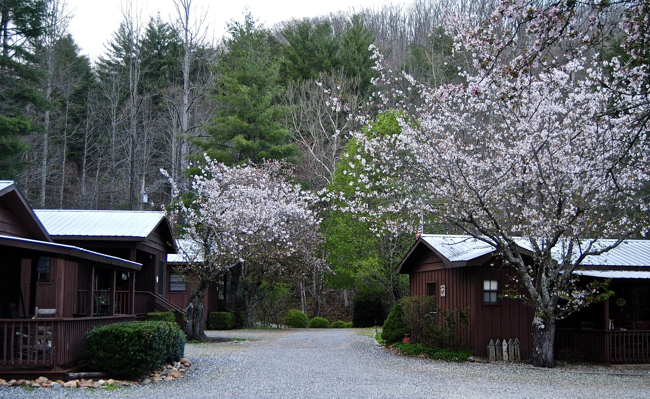 Home Sweet Home - Sunset Farm Cabins - individual cabins with hot tub, grills, fire pit. Reasonably priced & cozy.