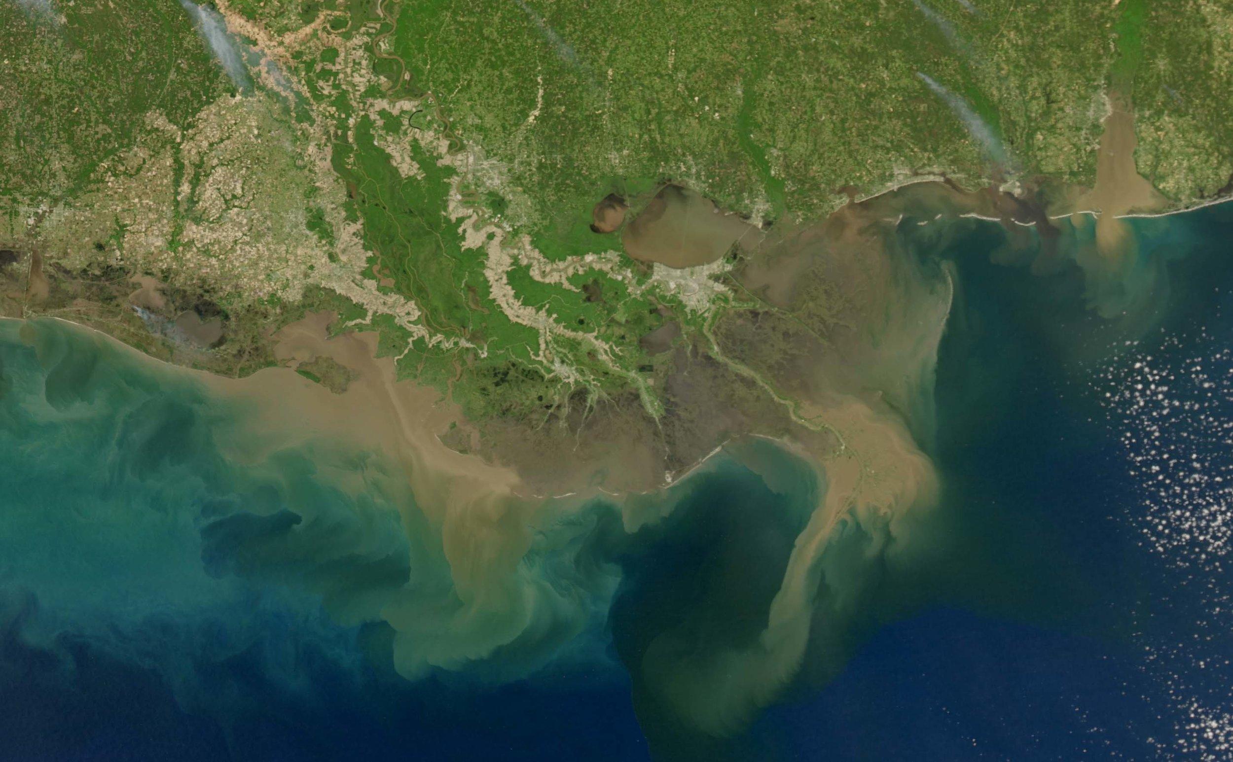 Wetlands_image_web.jpg