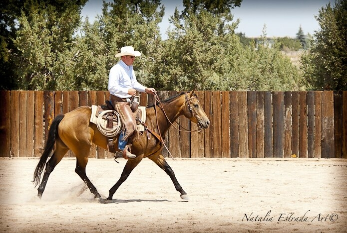 Vaquero Ranch Riding Clinic, Loal on Teo; 2012