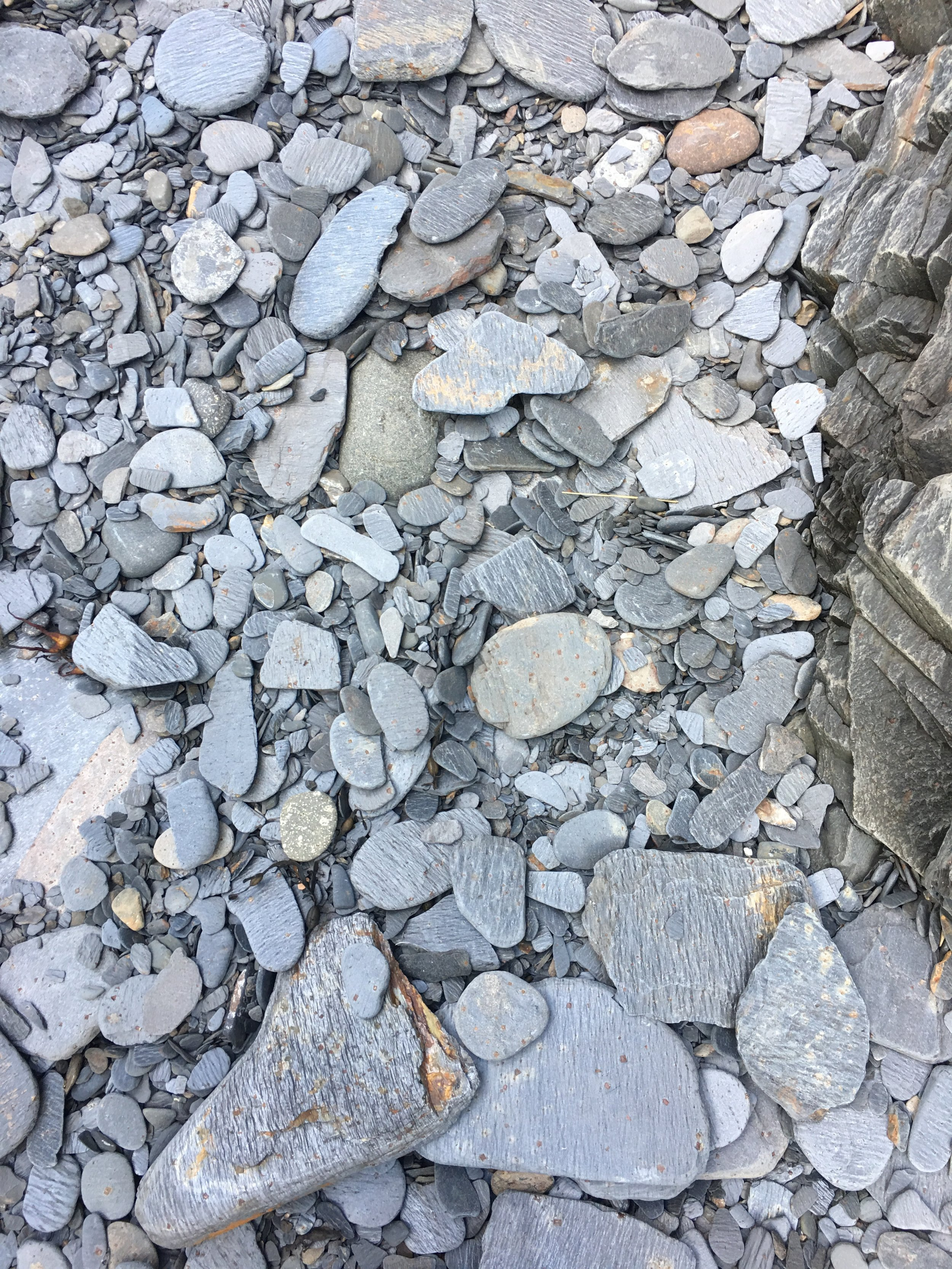 Easdale Island Slate. How many perfect stones do you see?