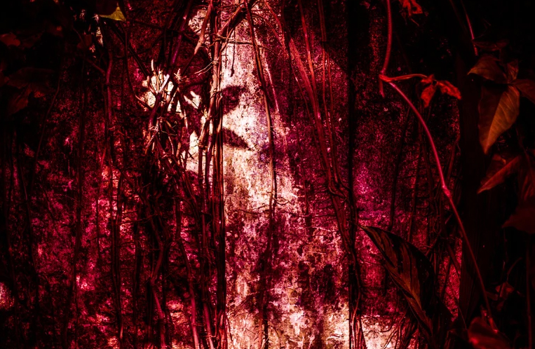 Fotolibros - Saudade - Mariceu Erthal