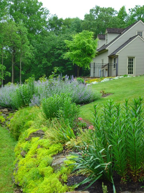 Maffei Landscape Design