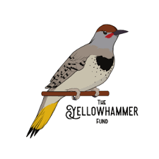 Yellowhammer fund.png