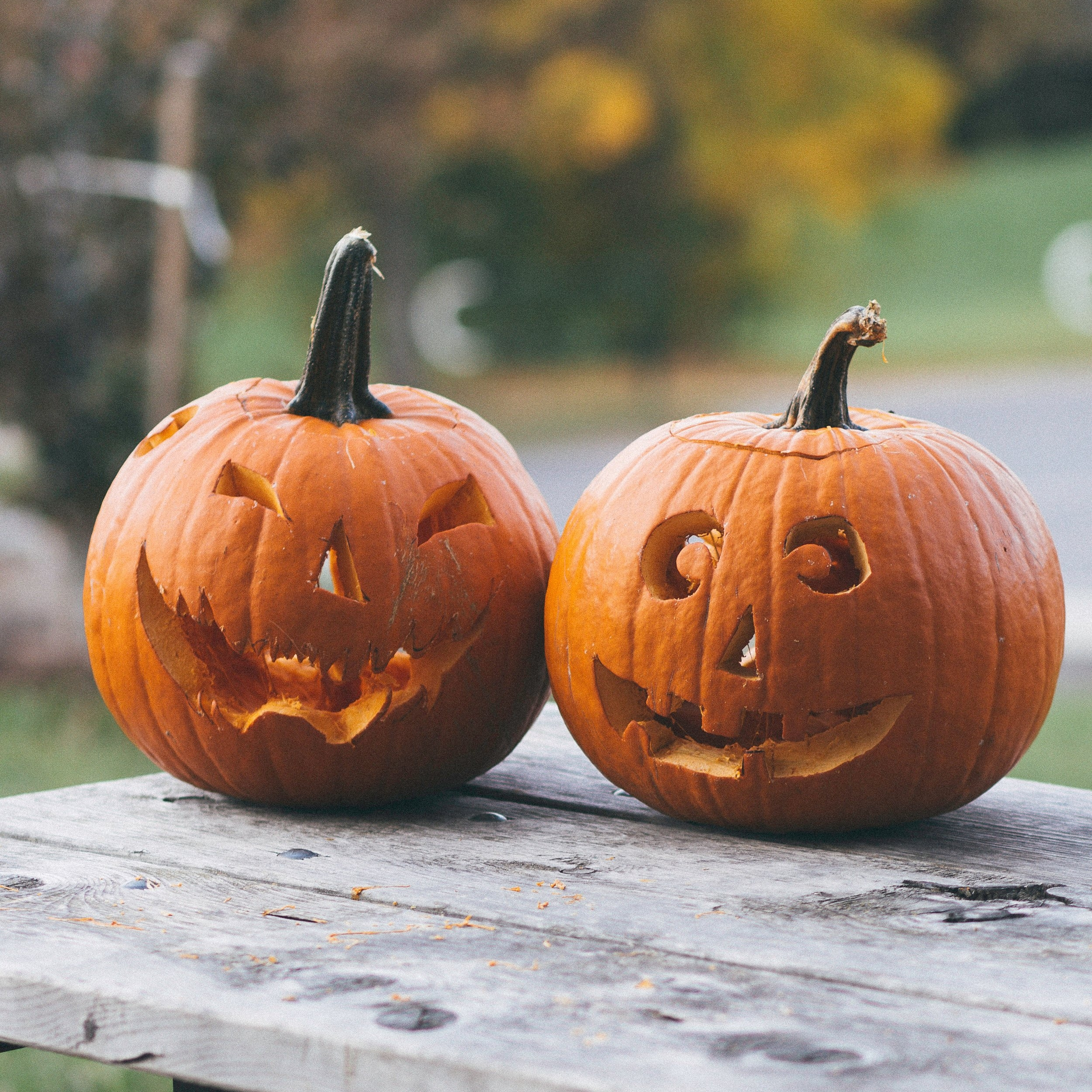 carved pumpkins on wooden table