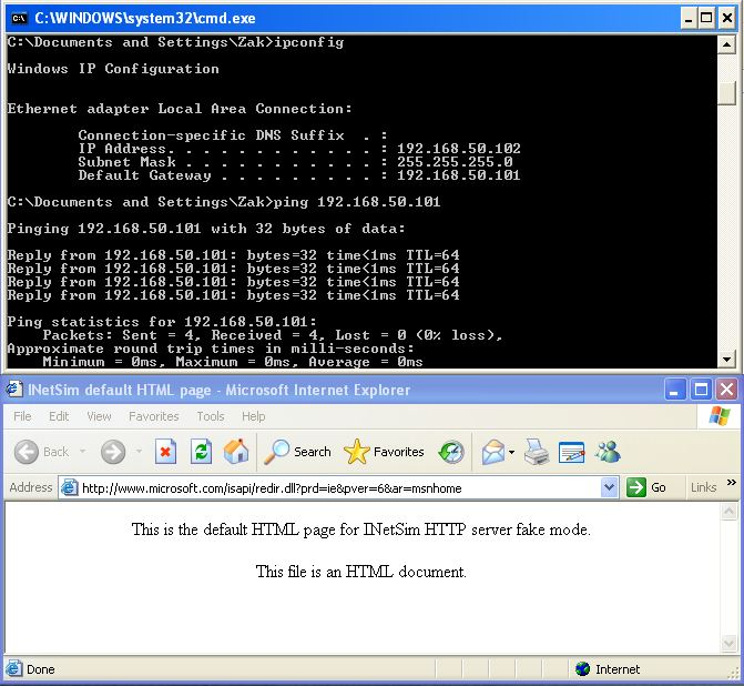 Windows XP ipconfig