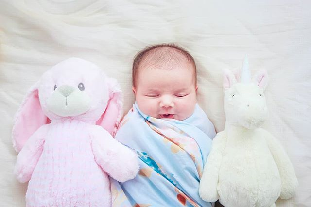 Tues-daze 💕🐰👼🦄💤 . #newbornphotography #babygirl #wilmingtonnc #babyphotography  #familyphotographer #wilmingtonphotographer