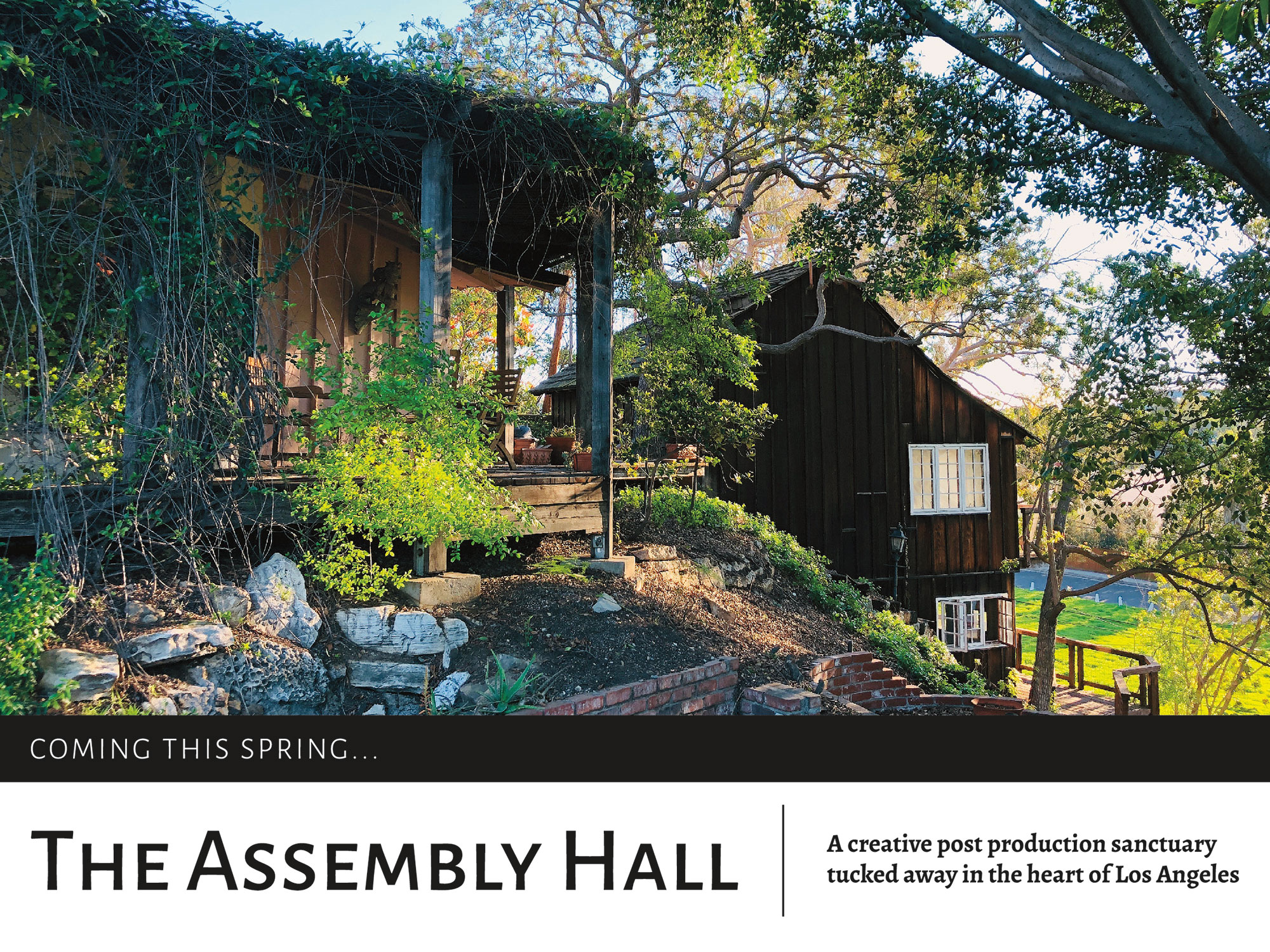 Ashley-Mae-Gall_Web_The-Assembly-Hall.jpg