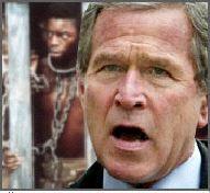 bush slaves.jpg