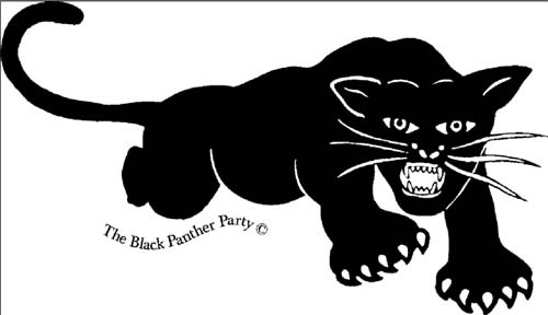 bpp logo.jpg