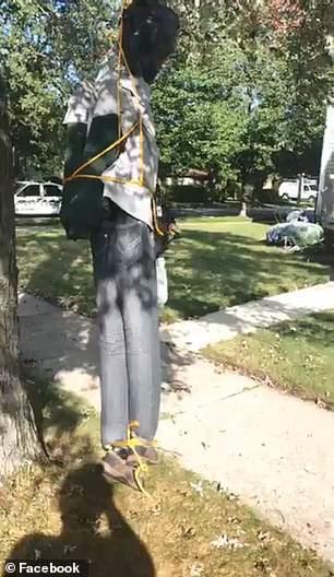hanging 2.jpg