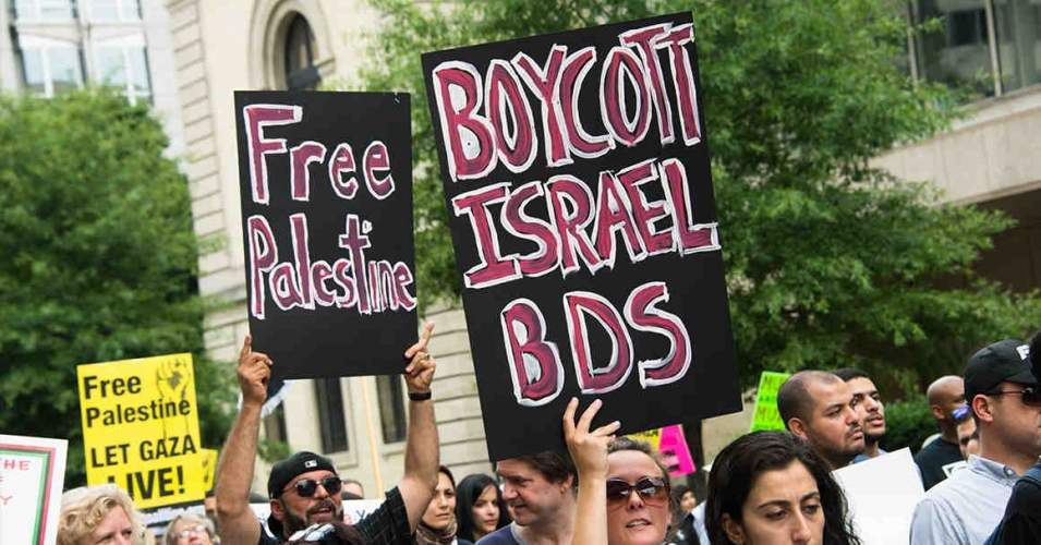 boycott signs.jpg
