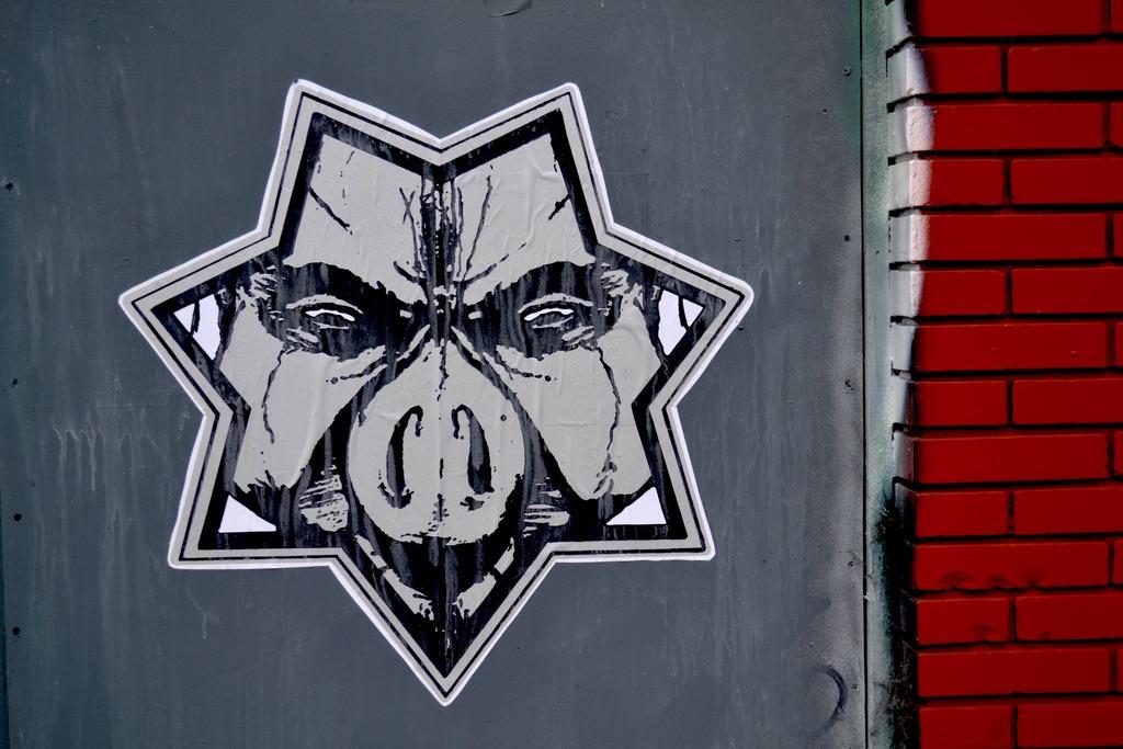 pigs gov.jpg