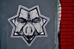 pigs+gov.jpg