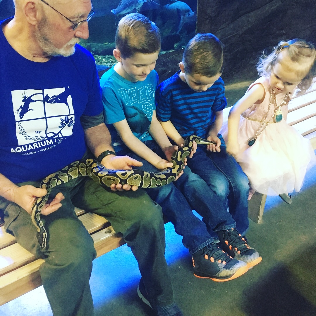 Here they are socializing with a man...and a snake.