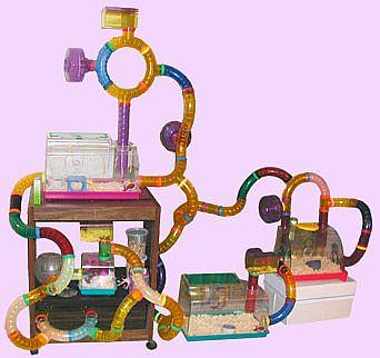 plastic_tube_cage.jpg