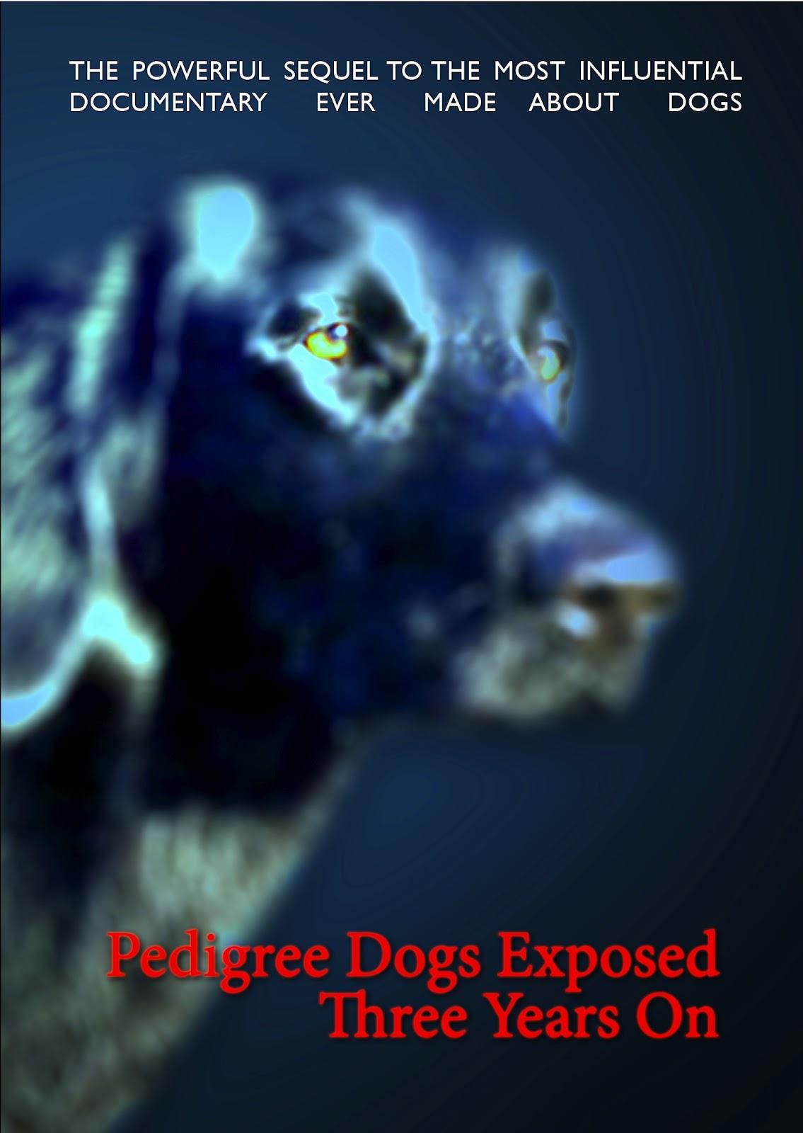 PDE3YO DVD cover crop.jpg