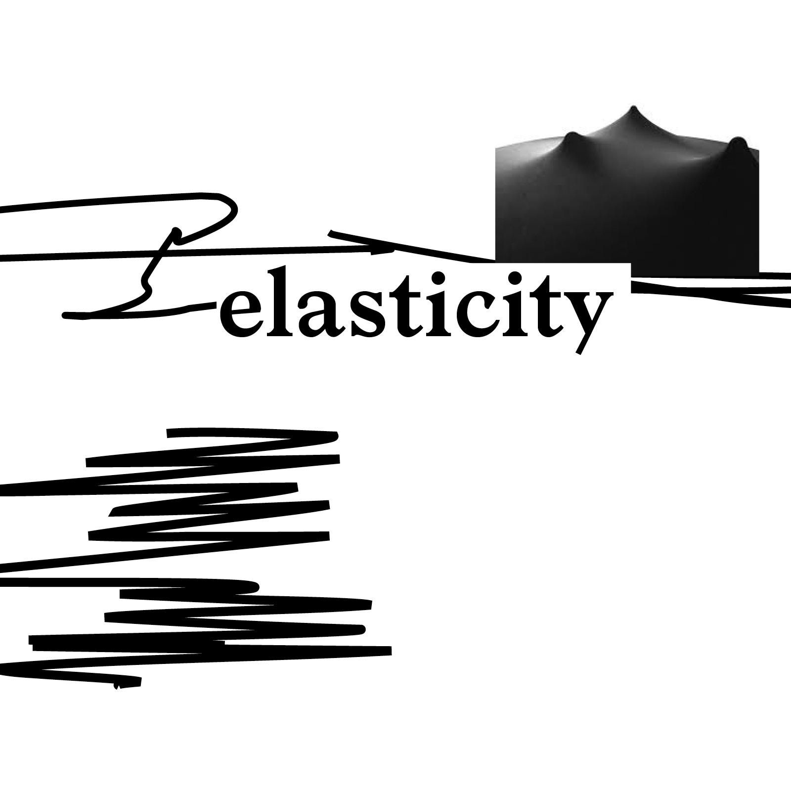 elasticity.jpg