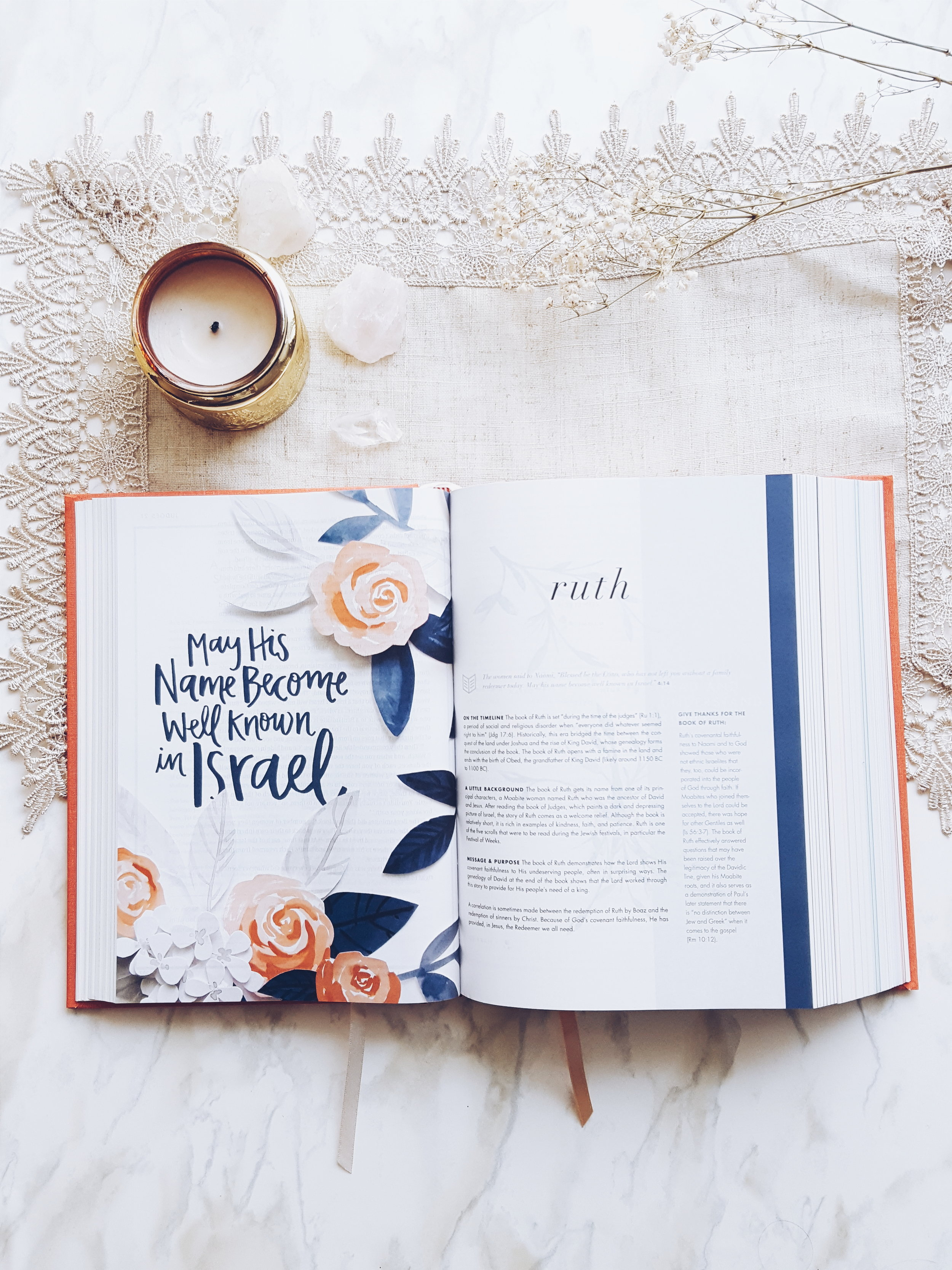 In 2017, She Reads Truth launched a beautiful Bible featuring some of their Devotionals - Holman Christian Standard Bible (HCSB) Translation