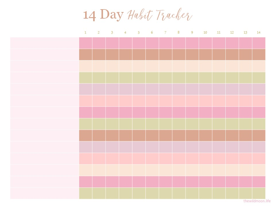 14 Day Tracker - Click Button Below to Download PDF