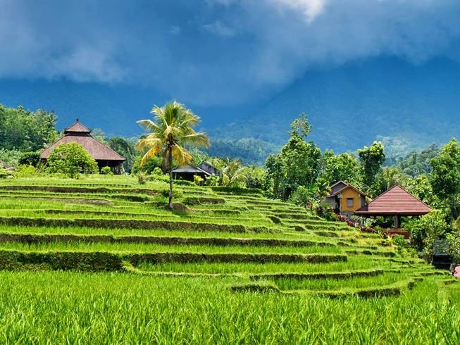 7-day-hot-yoga-retreat-in-bali.png