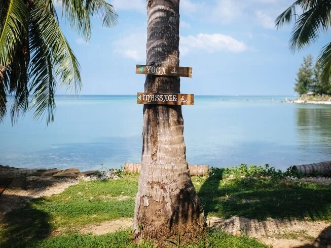5-day-fasting-yoga-retreat-in-thailand.jpg