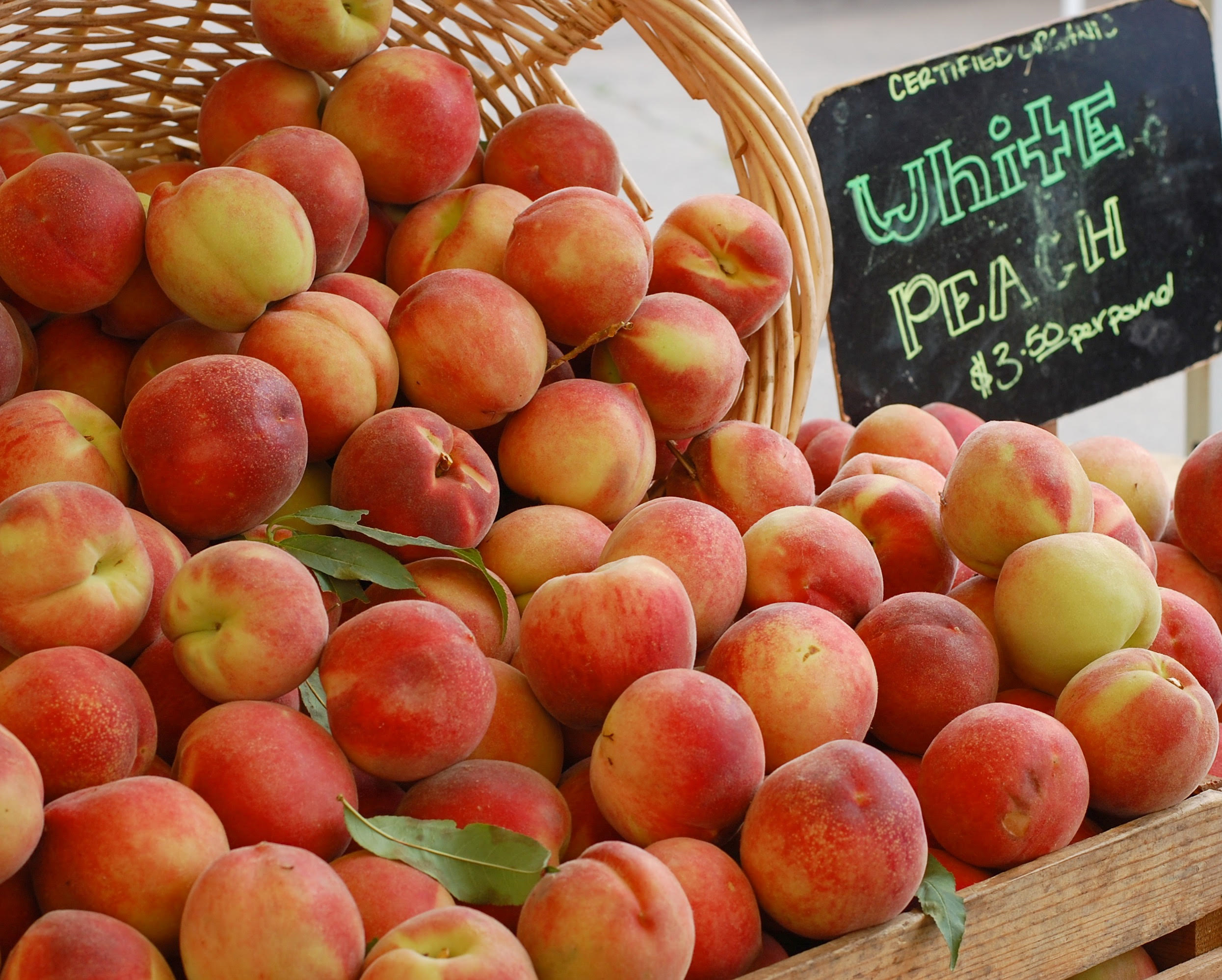 Fresh Fruits & Veggies -