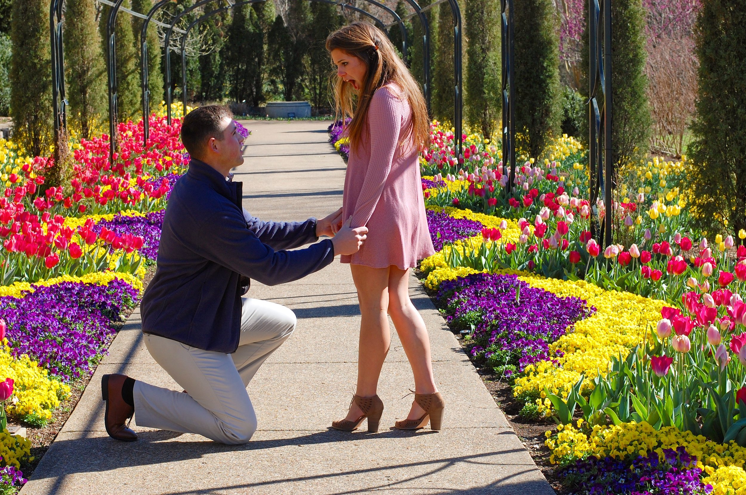 Preston proposing at Cheekwood Gardens in Nashville, TN.  March 2017