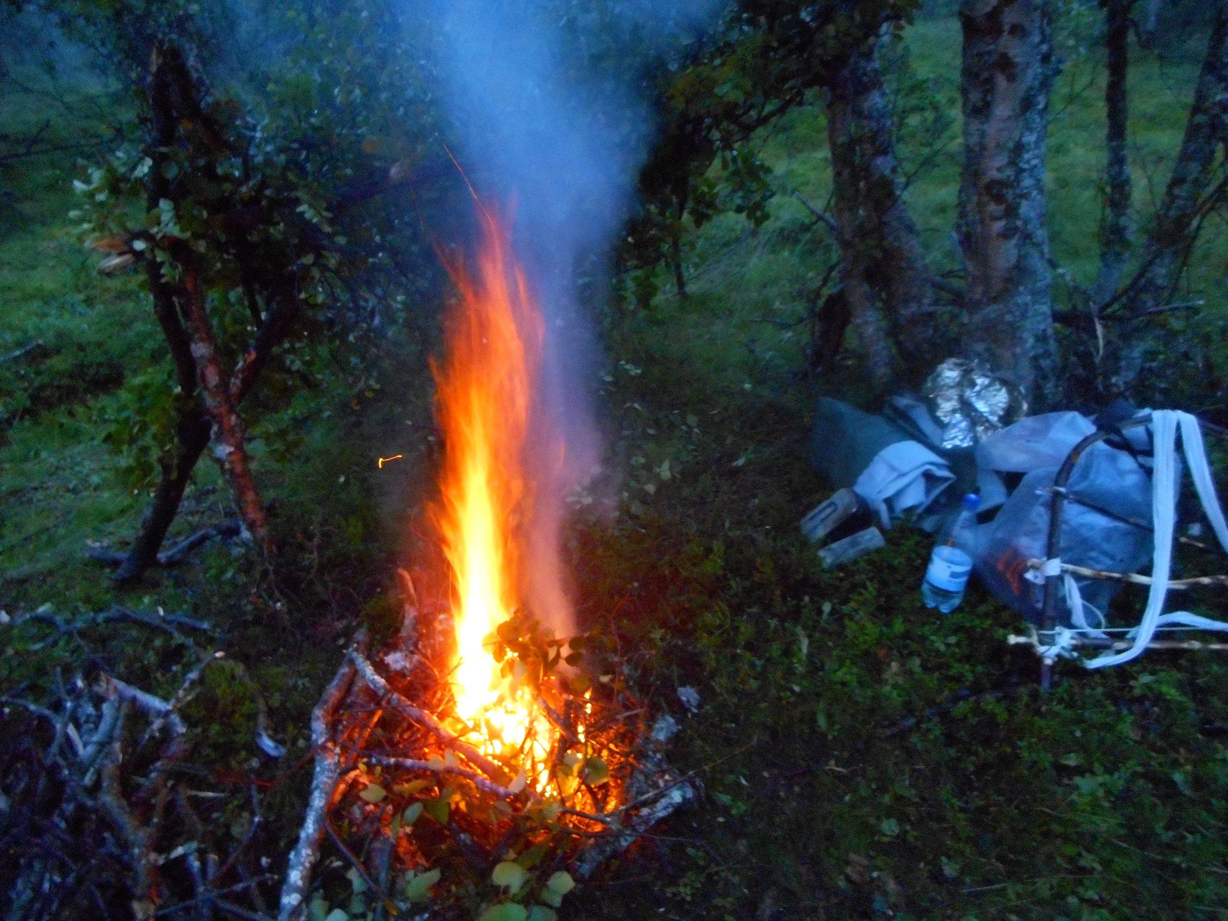 Magical Finnish Nature