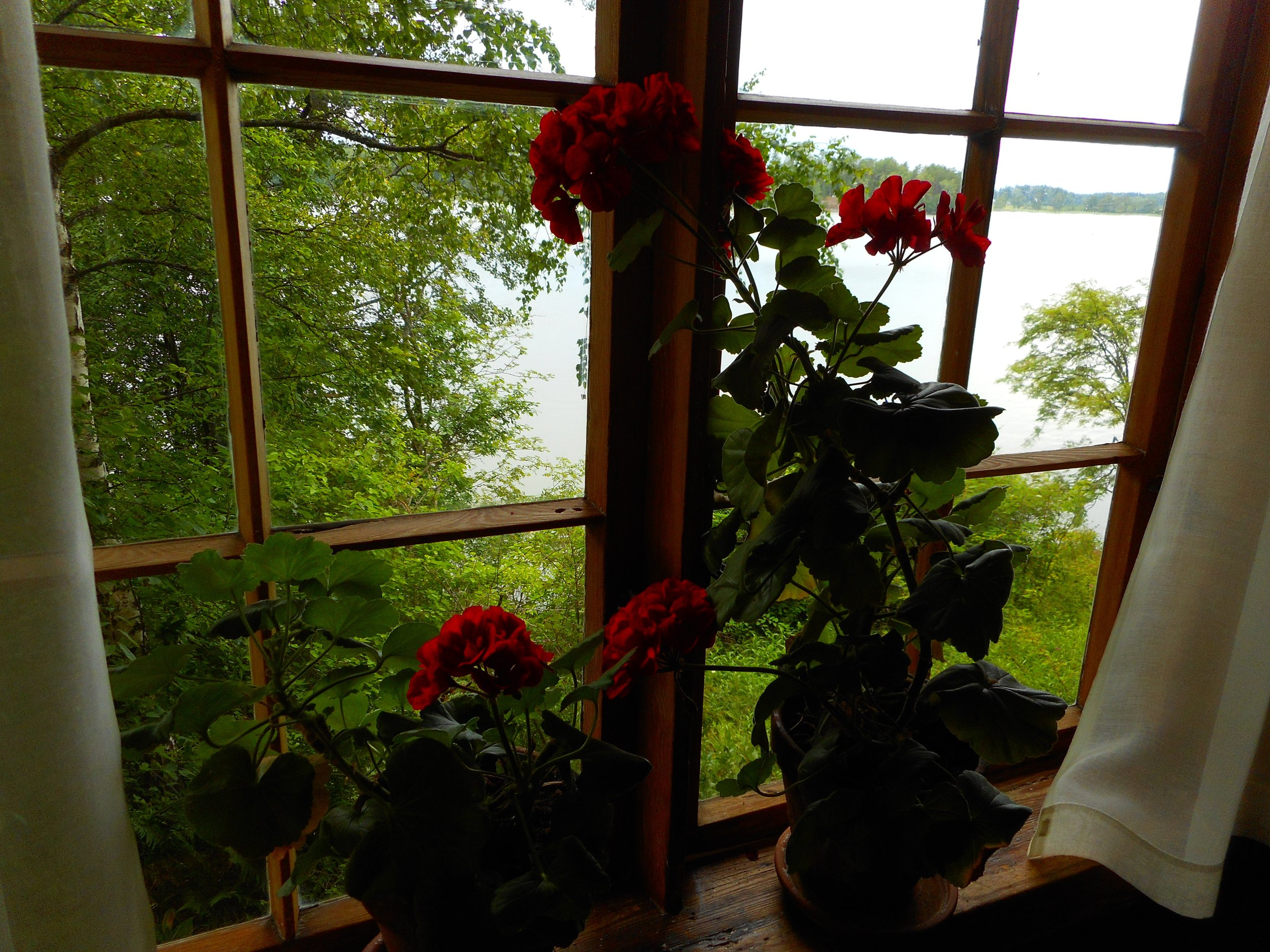 Lake Tuusula Guided trip from Helsinki