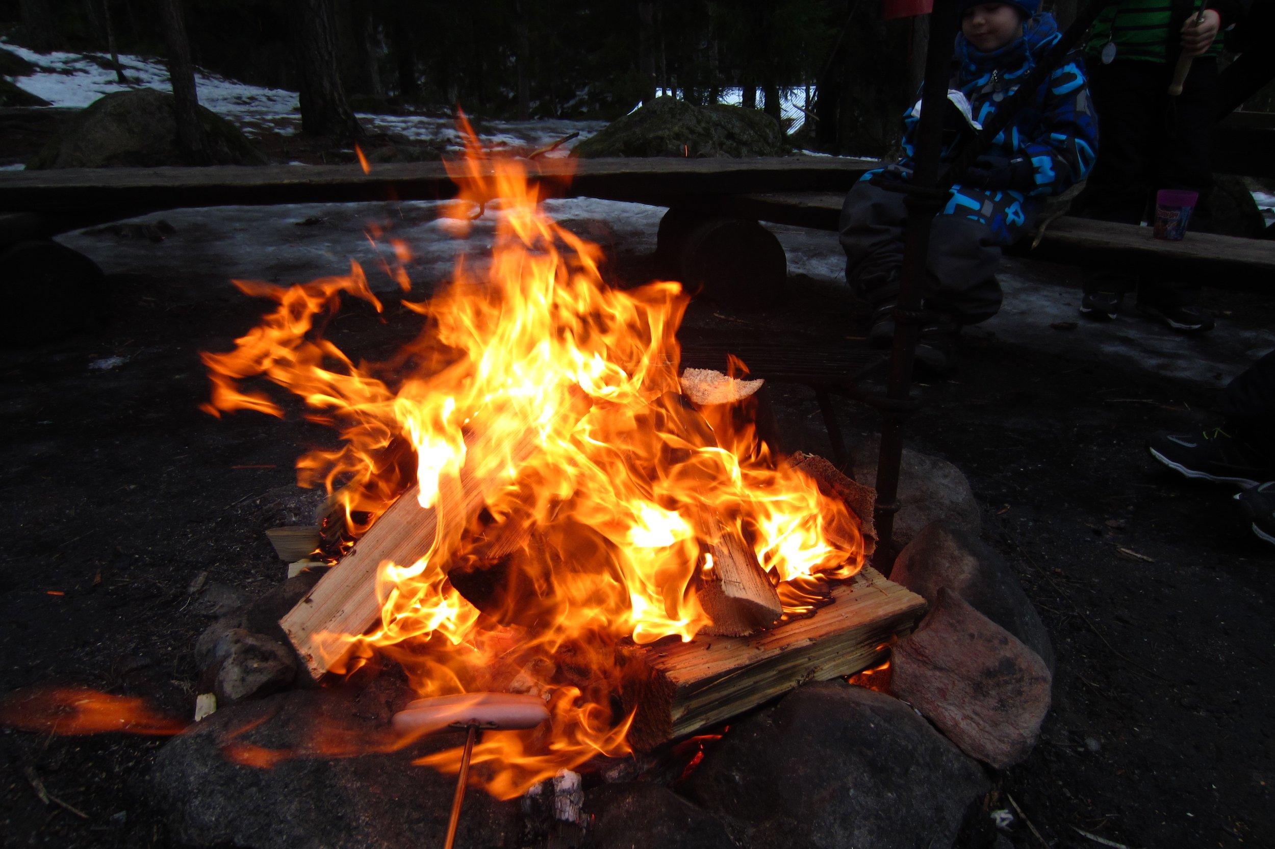Camp fire private nature trip Helsinki
