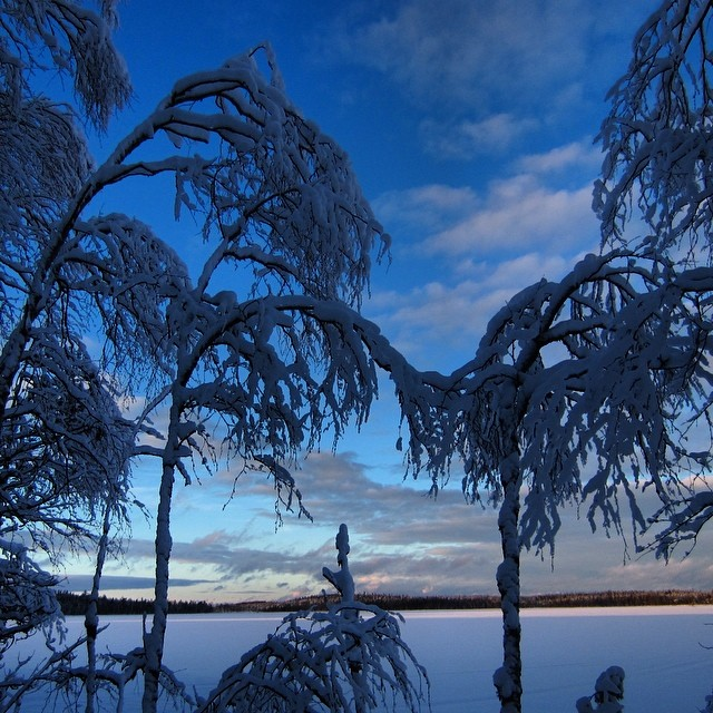 #magicalblue #magicalbluelight #lomitravels #lominaturetravels  #visitfinland #visithelsinki  #myhelsinki #explorefinland #finland #finlandnature #finnishnature #finlandnaturally  #bestoffinland #beautyofsuomi #luontoonfi