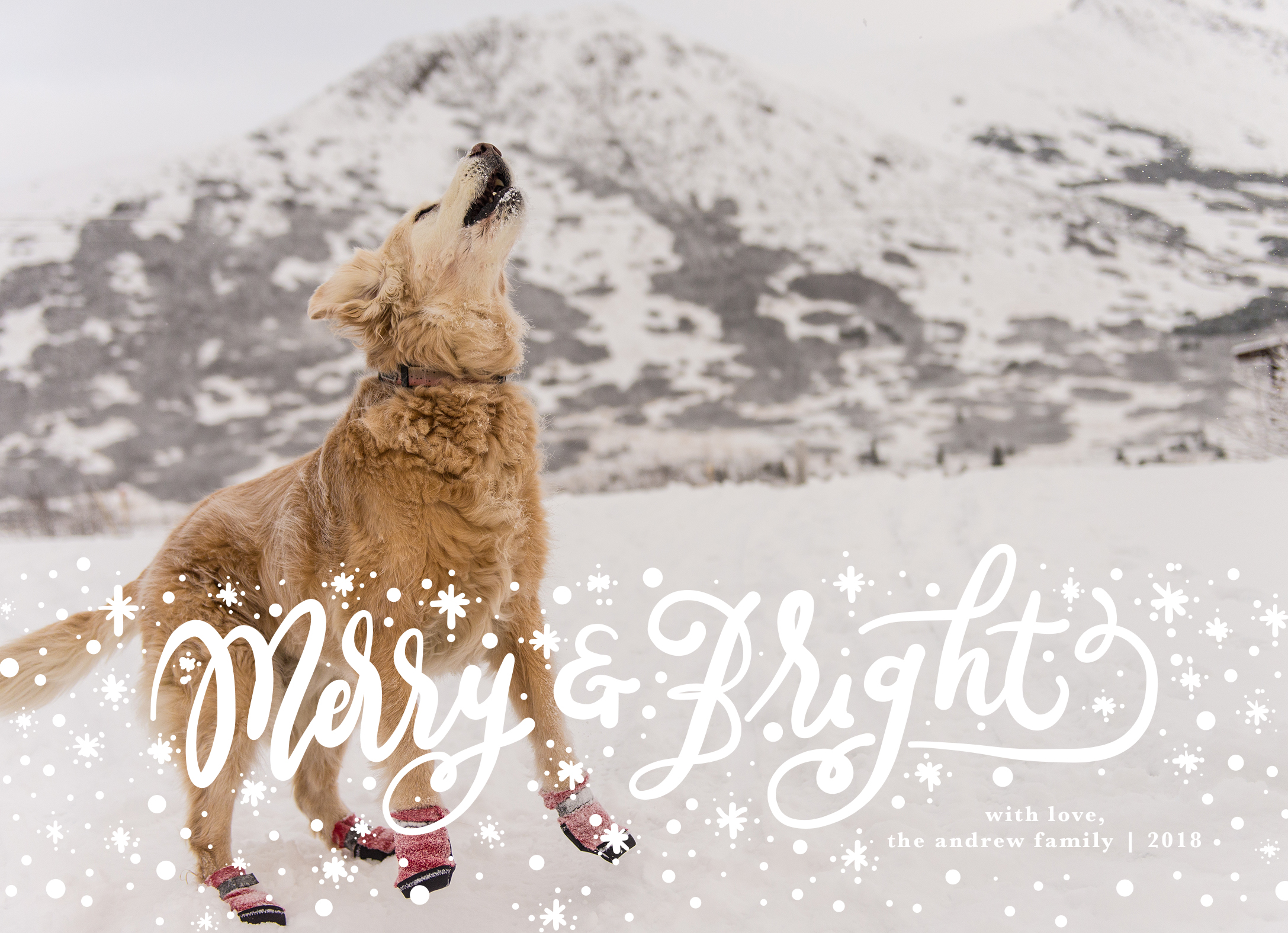 Merry and Bright Front.jpg