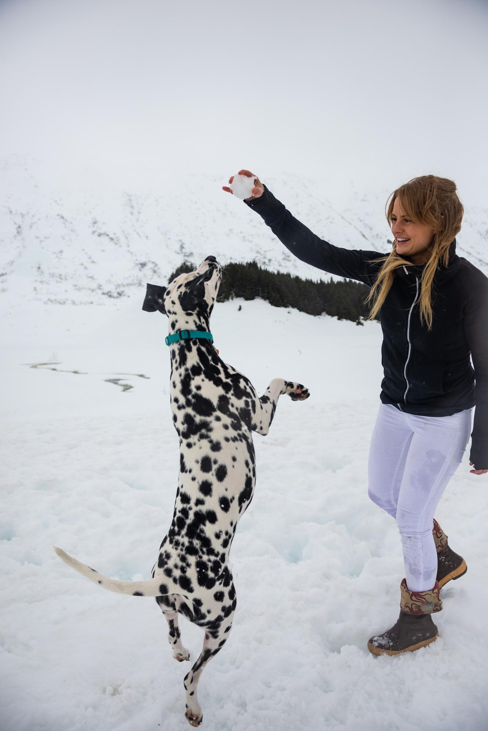 Meredith Berg Photography Anchorage Alaska Dog Pet Photographer ChristinaandTangles095-Edit.jpg