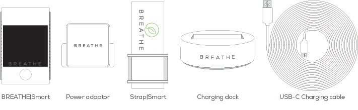 Breathe Smart pollution monitor box contents
