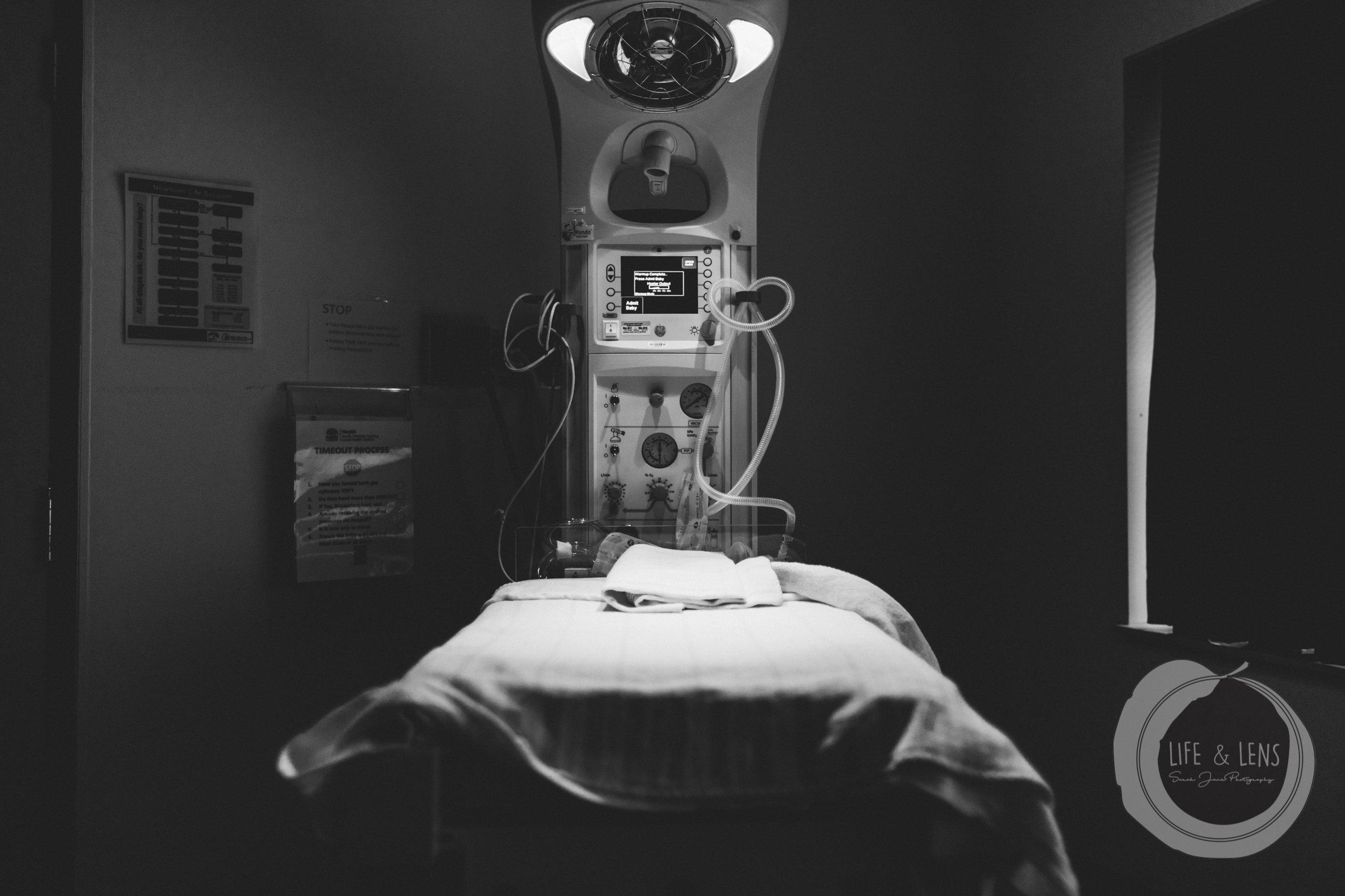 sydney birth photographer newborn hospital bed