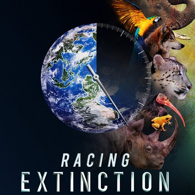 On May 22, 1992, the text of the Convention on Biological Diversity was adopted by the UN at a conference in Nairobi, Kenya. The International Day for Biological Diversity is celebrated each year on the anniversary of this date. Watch Cinema for Peace nominated film ´Racing Extinction´ which tackles this issue  #ngo #nonprofit #education #love #volunteer #help #dogood #donate #change #follow #socialgood #socialwork #community #support #socialimpact #humanity #giveback #instagood #causes #fundraising #film #cinema #movies #hollywood #films #music #filmmaker #director #instagood #like