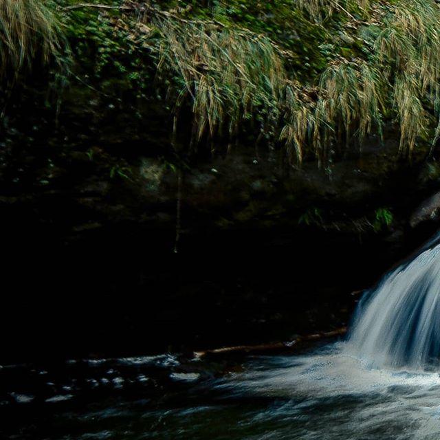 Falling Water (3/3) 📷 Max van Rijn @maxvanryn #digitalsarntal . . . . . . . . . . #sarntal #photographers #filmmakers #outdoor #visualartists #lifeinsouthtyrol #visitsouthtyrol #inspiration #waterfall #moodygrams