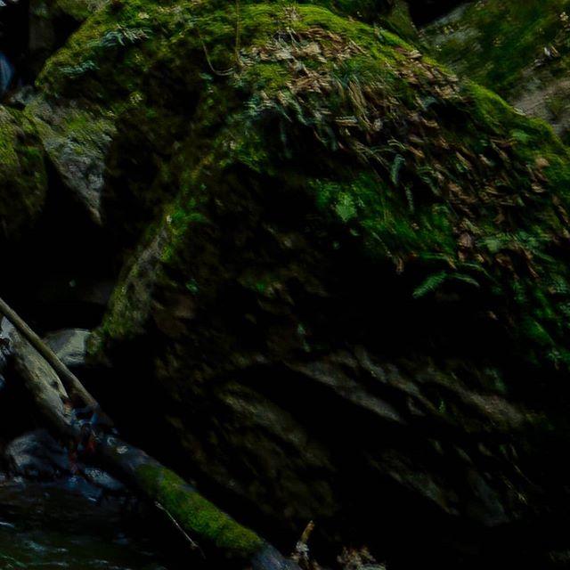 Falling Water (1/3) 📷 Max van Rijn @maxvanryn #digitalsarntal . . . . . . . . . . #sarntal #photographers #filmmakers #outdoor #visualartists #lifeinsouthtyrol #visitsouthtyrol #inspiration #waterfall #moodygrams