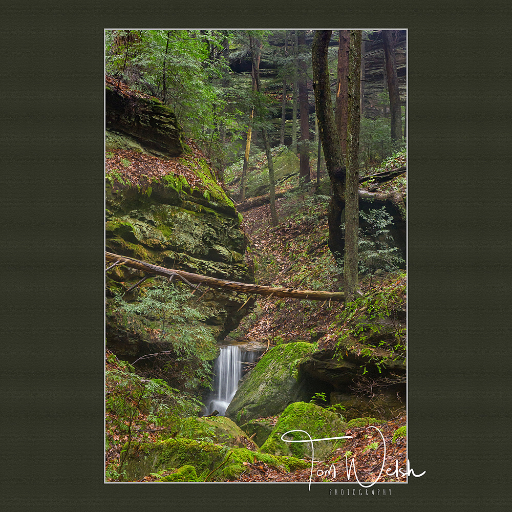 along the hike to Long Hollow Falls