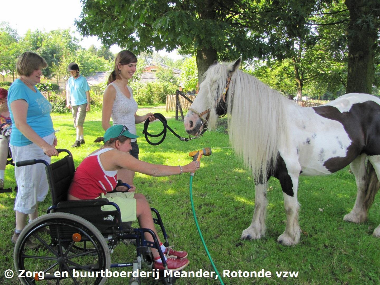Zorgboerderij Meander Kapellen-Antwerpen 15.JPG