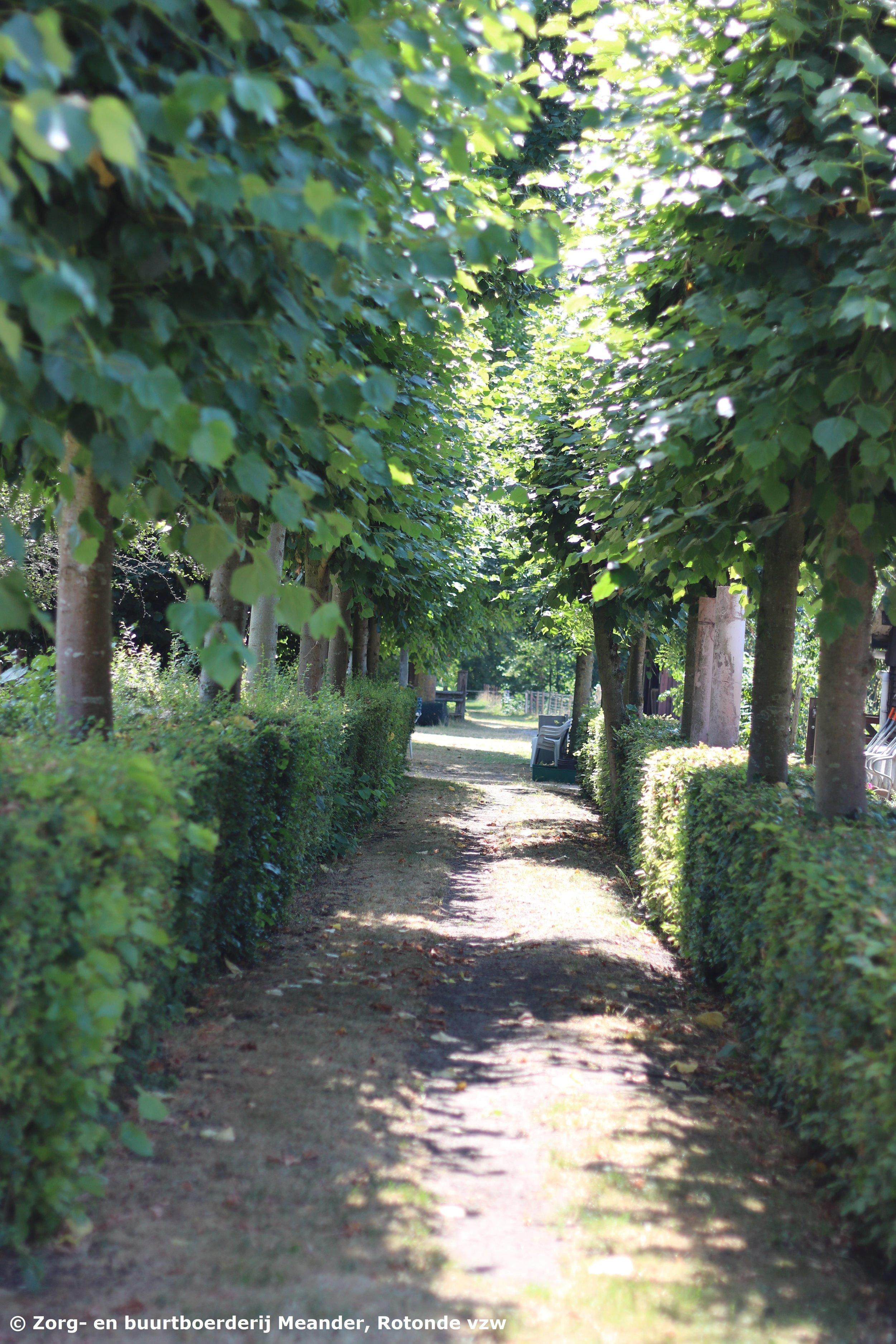 Zorgboerderij Meander Kapellen-Antwerpen 22.JPG