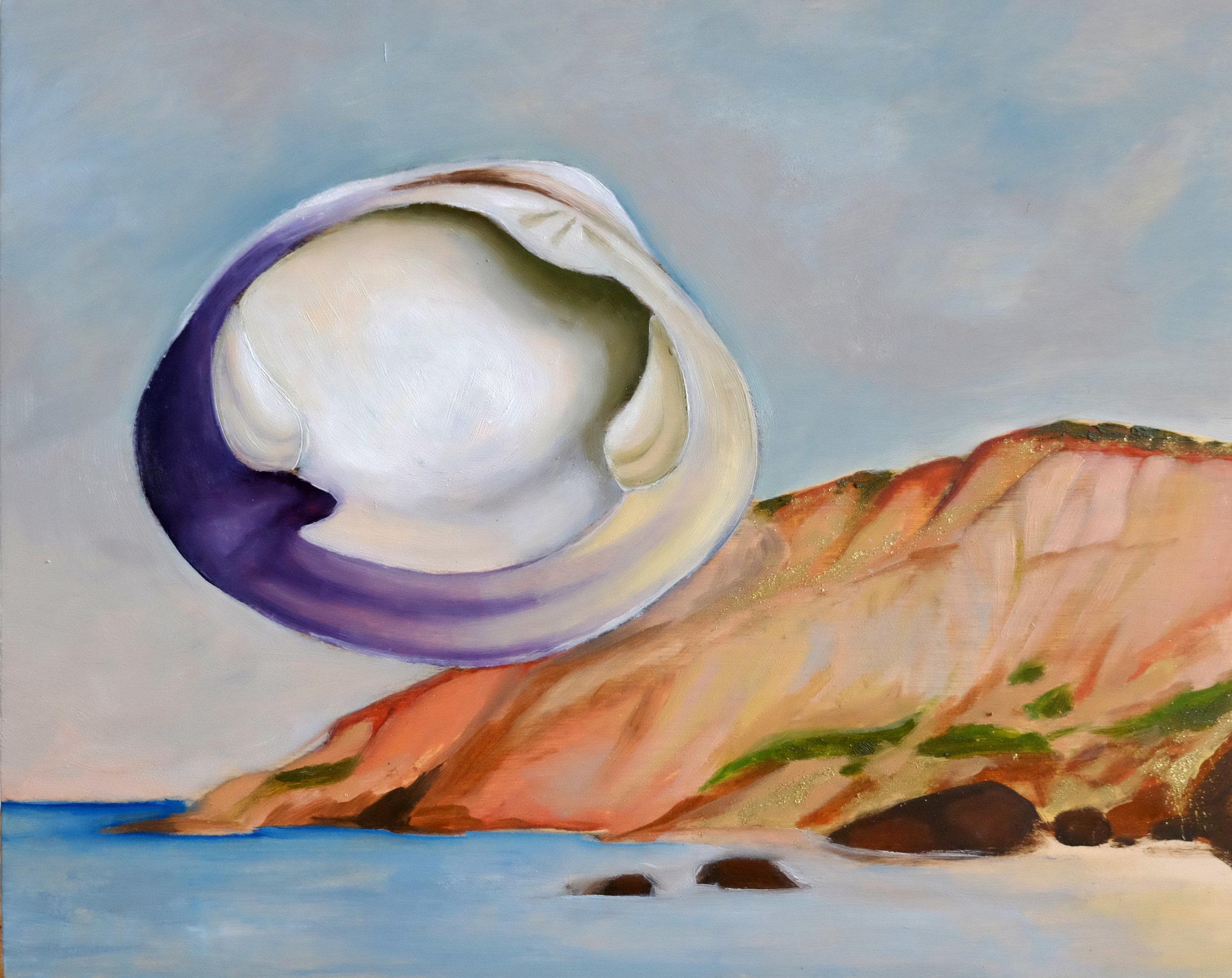 Wampum & Shells -