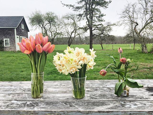 Fresh flowers in the farmstand @thegreybarnchilmark. Go get 'em!
