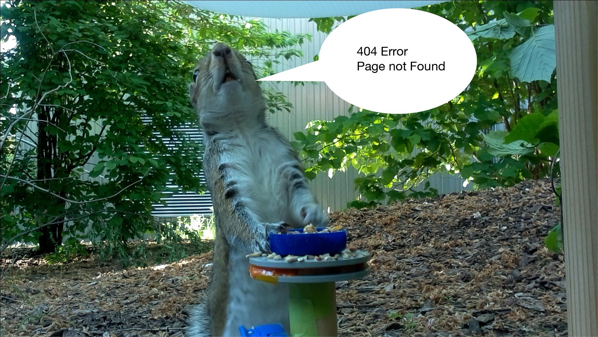 404Error_PageNotFound.jpg
