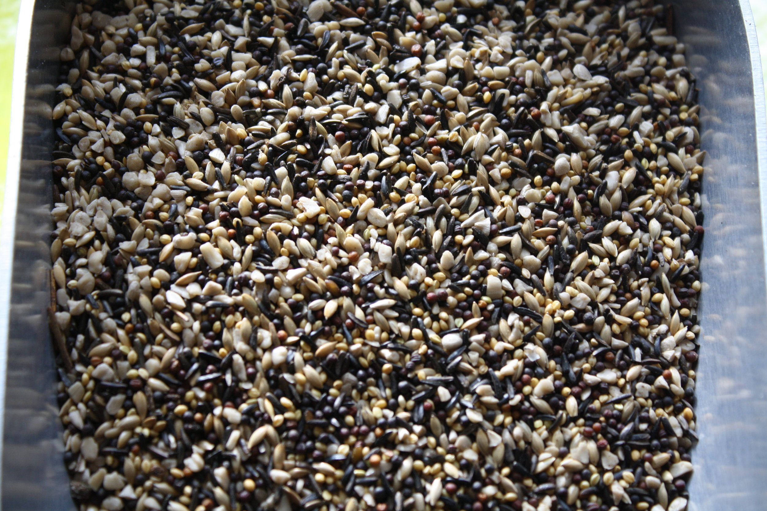 This mixture of seeds will drive your finches crazy. Small enough to fit into your thistle feeder, this mix will give them a variety of seeds to pleasure their palate. Available by the pound, 25 and 50 pound bags.